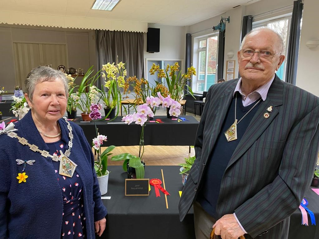 The Mayor at the Orchid Society Flower show